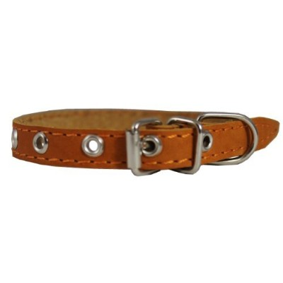 Real Leather Dog Collar 9.5-13 Neck Size, 1/2 Wide Chihuahua, Puppies by Dogs My Love