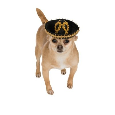 Rubie's Pet Sombrero, Small to Medium, Gold and Black by Rubie's
