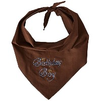 Mirage Pet Products 67-11 LGCO Birthday Boy Rhinestone Bandana Cocoa Large