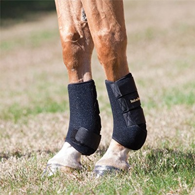 Back on Track Therapeutic Horse Exercise Boots for Front Legs, Black, Large by Back on Track
