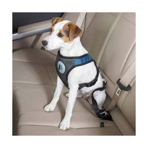 Dog Is Good Car Harnesses - Versatile Padded Harnesses for Dogs - X-Large, Blue by Dog is Good