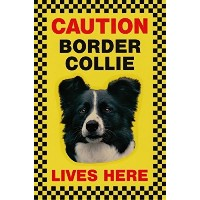 CAUTION BORDER COLLIE LIVES HERE サインボート:ボーダーコリー 写真 画像 英語 看板 Made in U.K [並行輸入品]