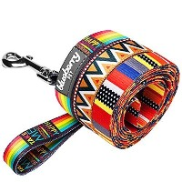 Blueberry Pet 1-inch by 4-Feet Elite Basic Nylon Dog Leash with Flame Stitch and Henley Stripes,...