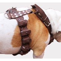 7 lbs Genuine Brown Leather Weighted Dog Harness for Exercise and Training. Fits 35-40 Chest by...