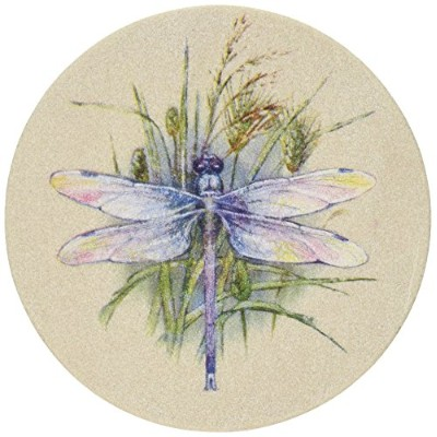 Thirstystone Dragonfly Coasters by Thirstystone