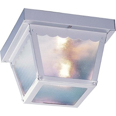 Volume Lighting V7232-6 2-Light Outdoor Ceiling Mount, White by Volume Lighting