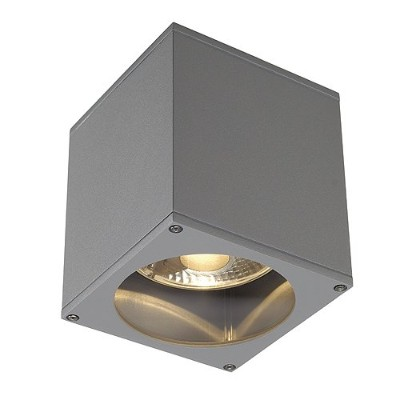 SLV Lighting 2229554U Big Theo Ceiling Out Outdoor Ceiling Lamp, Silver Grey by SLV Lighting
