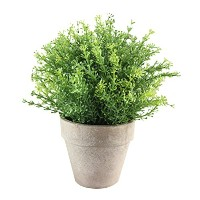 Zhhlaixing Home Decoration Fake Flowers/Artificial Indoor Plants with Pots