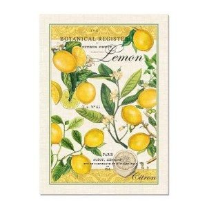 Michel Design Works Lemon Kitchen Towel, Natural Woven Cotton [並行輸入品]