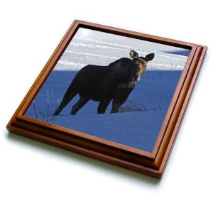 3drose TRV _ 13864_ 1Moose Cow Standing in the Snow Trivet withセラミックタイル、8by 8インチ、ブラウン