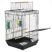 Super Pets Kaytee Cockatiel Treat Play-n-Lear Bird Cage Bonding Training Clean
