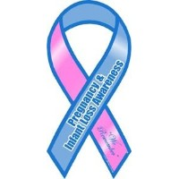 Pregnancy and Infant Loss Awareness Ribbon Magnet by Magnet America