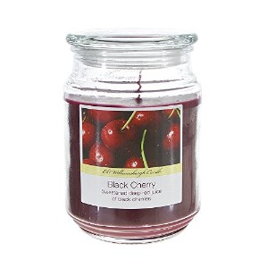 Nicole Home Collection Old Williamsburgh Candle, Black Cherry, 18 oz. [並行輸入品]