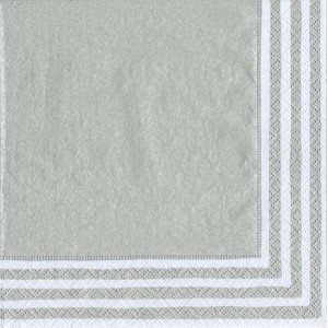 Caspari Entertaining Luncheon Napkin, Stripe Border Silver, 20-Pack [並行輸入品]