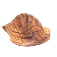 Turtle – Carved In Olive Wood ( 10 cm – 4インチ)