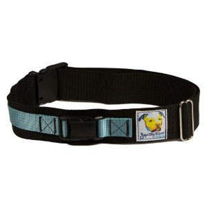 Squishy Face Studio Hands Free Dog Leash Belt, Medium/Large, Ocean Blue by Squishy Face Studio