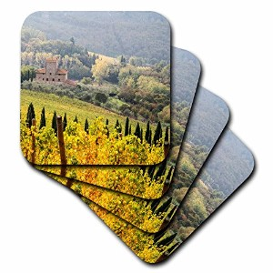 Danita Delimont – Vineyards – イタリア、トスカーナ。Vineyard in autumn in the Chianti regionトスカーナの。 – コースター set-of-4-Soft cst_207836_1